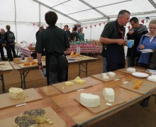 Cider and Cheese Festival